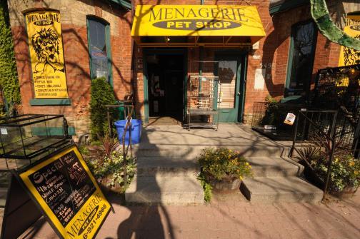 Menagerie-Pet-Shop2